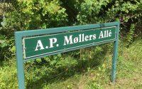 A.P. Møllers Alle i Dragør
