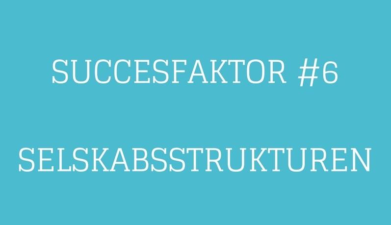 Succesfaktor #6 Selskabsstruktur